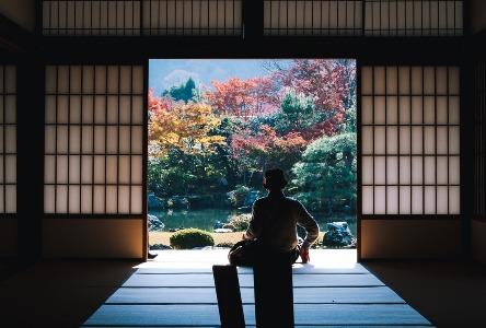 Die Japanische Heilung