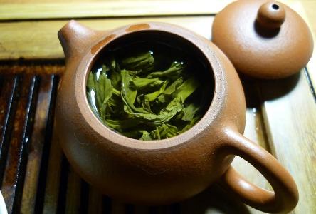 Grüner Tee und Polyphenole